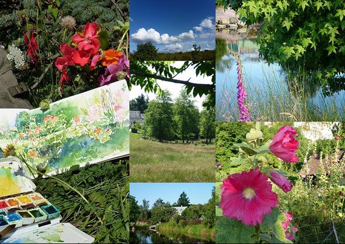 agnes martin genty peintre aquarelle carnet de voyage aquarelle detente fleurs chemins lumieres