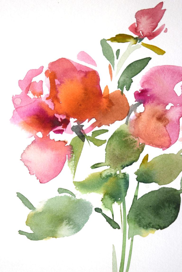 agnes martin genty peintre aquarelle fleur roses